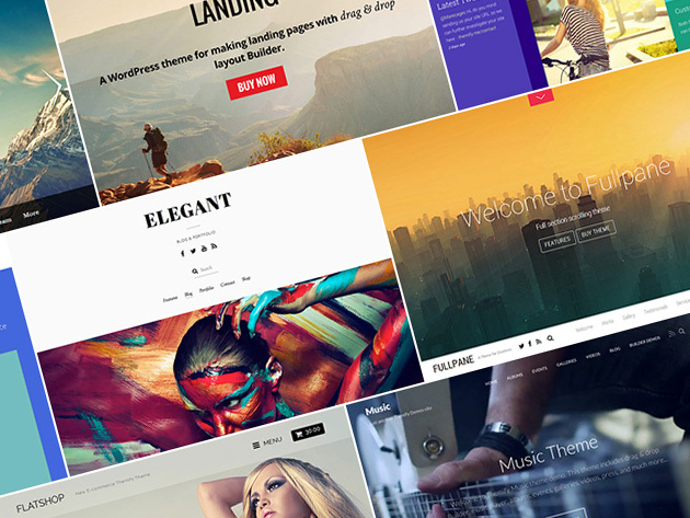 Themify Unlimited WordPress Themes: 1-Yr Subscription