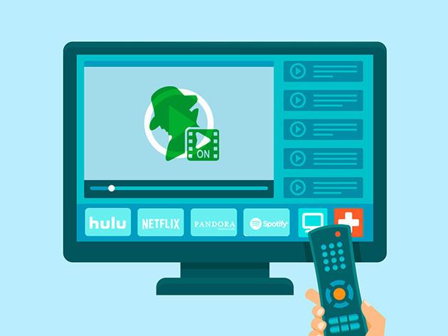 ibDNS SmartDNS: Lifetime Subscription
