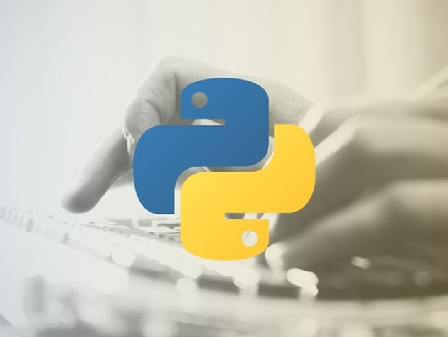 Become a Professional Python Programmer
