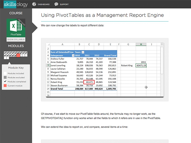 Learn how to analyze and present data with Excel PivotTables for $12