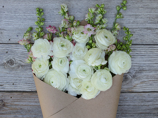 The Bouqs Company is an online floral retailer that delivers flowers fresh from eco-friendly, sustainable farms to doorsteps nationwide. We connect farms and a curated network of artisan florists /5().