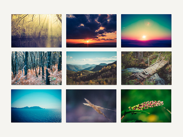 Upgrade your website and marketing with 400 free stock photos!